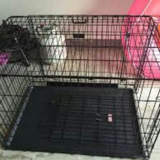 Medium dog cage used for boston terrier