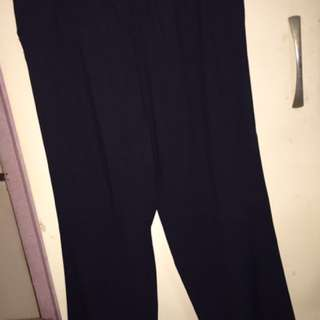 Plus size Pants / Slacks size 40