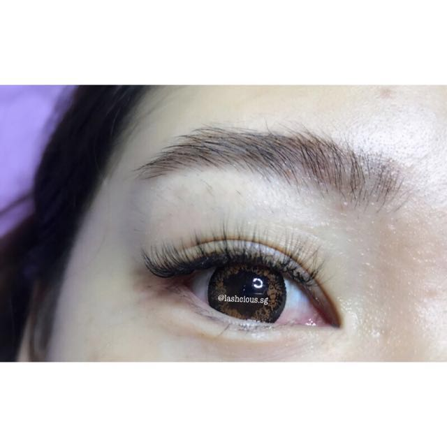 0d84a441b72 4D Volume Lash Extensions, Health & Beauty, Makeup on Carousell