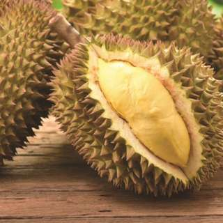 Durian plantation farm in Malaysia for sale