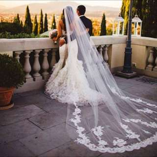 Stunning Cathedral Veil