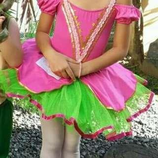 Ballerina / Princess tutu dress