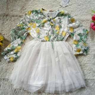Big Sale Dress Import