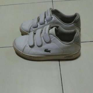 REDUCED..Lacoste Shoe
