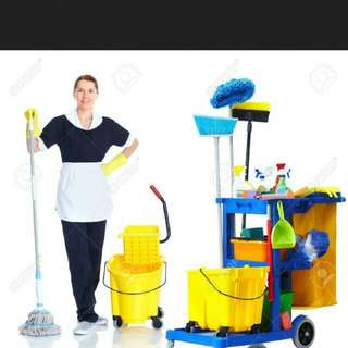 Condo block and club house cleaner