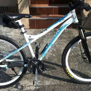 Trinx X1L Mountain Bike