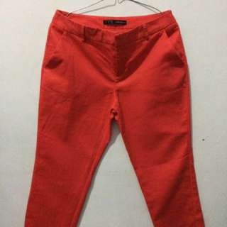 celana ZARA BASIC ORIGINAL + (FREE) hotpans brownies