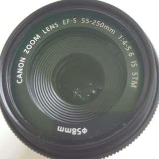 Canon EF-S 55 - 250 mm IS STM lens