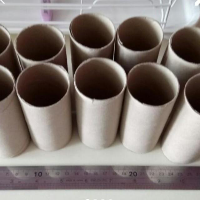 10 Pcs Of Toilet Rolls Cardboard