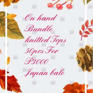 Knitted Tops Bundle Japan bale