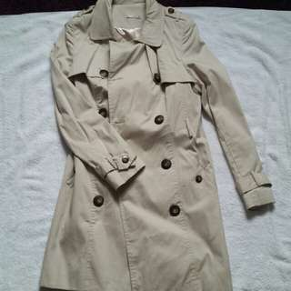 New Trenchcoat