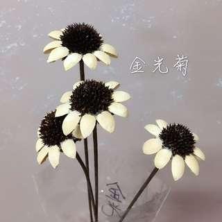 🚚 金光菊(不凋花,乾燥花,花圈,花藝設計)