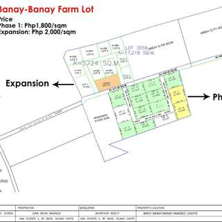 1800/sqm titled farm lot for sale in Amadeo near Tagaytay and Balite falls