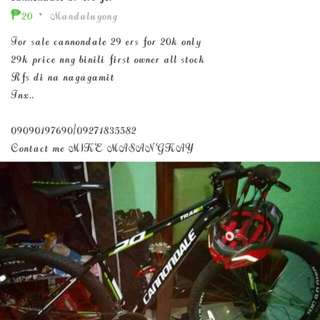 Cannondale 29 ers