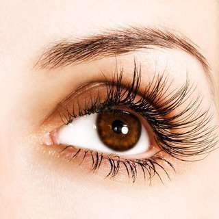 Lashed Extension ( FULLY ) ~nature look~