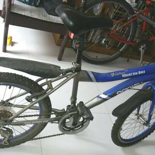 Rockwell Jr. Mountain Bike