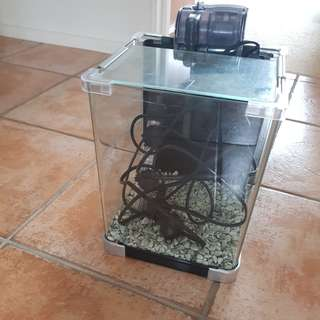 9L Fish tank (with pump+heater )
