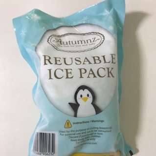 Autumn reusable ice pack (3 for $10)