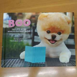 Boo - The Life of the World's Cutest Dog by J.H. Lee
