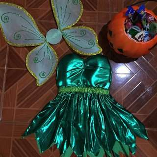 Tinkerbell Costume Set