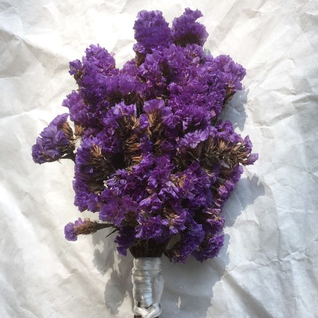 Dried Statice Flowers In Dark Blue And Purple Forget Me Not