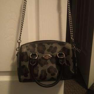 Coach ocelot purse + coin pouch