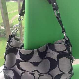 Coach Bag (Medium size)