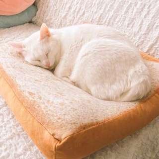 Toast Bread Cushions Seats Cats Pets Sleeping Plush Bread