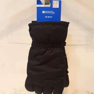 Mens ski gloves (small)