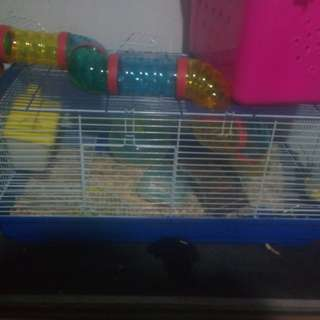 Hamster Cage With Toys And Water Bottle