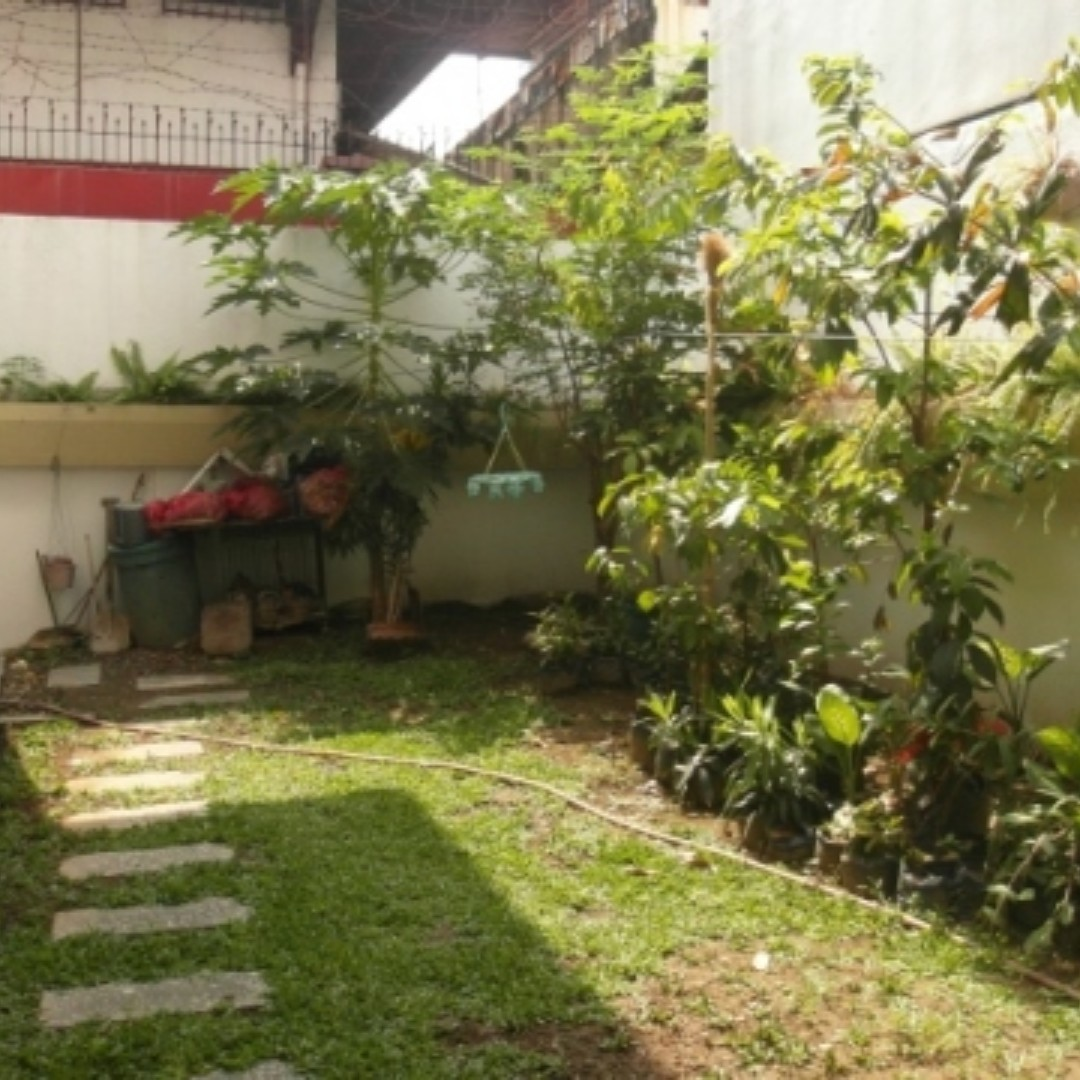 471SQM with GARDEN NEAR DILIMAN Quezon City House and Lot For Sale