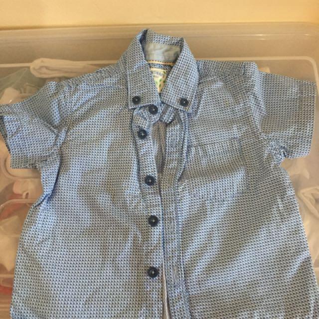 Gingersnap polo shirt