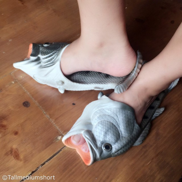 Something FISHY slippers