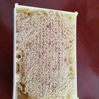 原產地發貨蜂巢500g