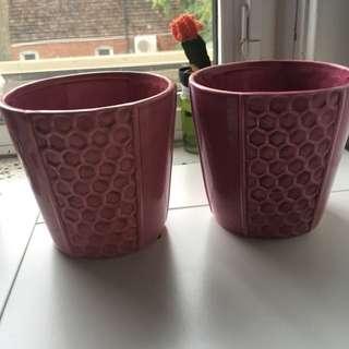 2 Flower Pots