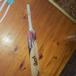 KOOKABURRA: Wild Beast Cricket Bat (S-H)