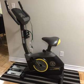 Golds Gym Bike