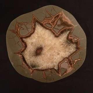 Fossil Mud - Septarian Nodule