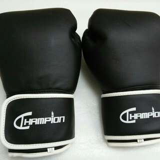 Boxing Gloves Champion 8oz, 16oz