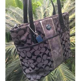 Coach Handbag by Raja Azura