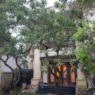 Rumah Mewah, Swimming Pool, Asri, Nyaman, Strategis di LEBAK BULUS