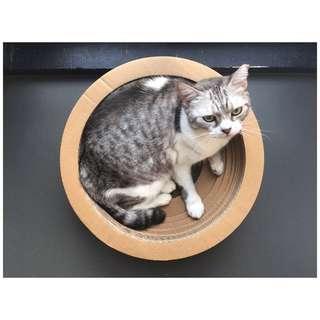 Cat Scratcher (Round Design)