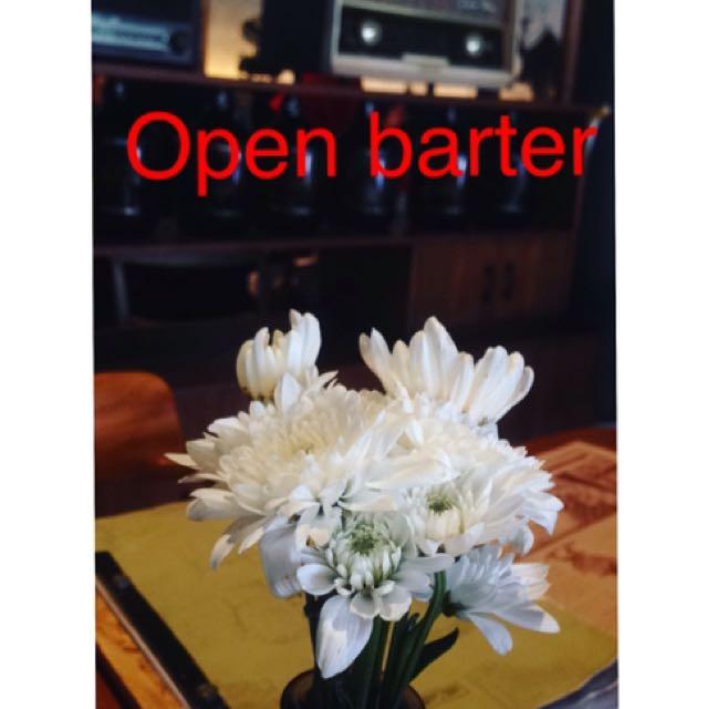Open barter again🛍