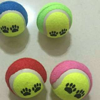 Pet ball toy