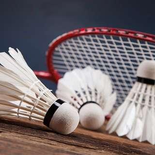 Weekend Badminton Class