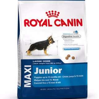 Royal Canin Maxi Junior 4kgs