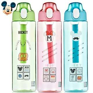 Mickey and Minnie Water Bottle