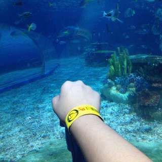 DISCOUNTED MANILA OCEAN PARK TICKET!!