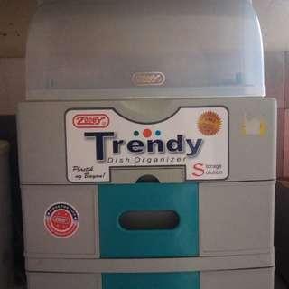 Trendy Dish Organizer