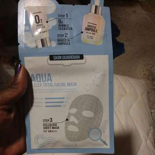 Face Mask (with sample cleanser)